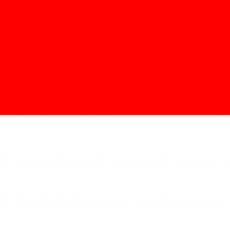 REPATRIERE INDONEZIA